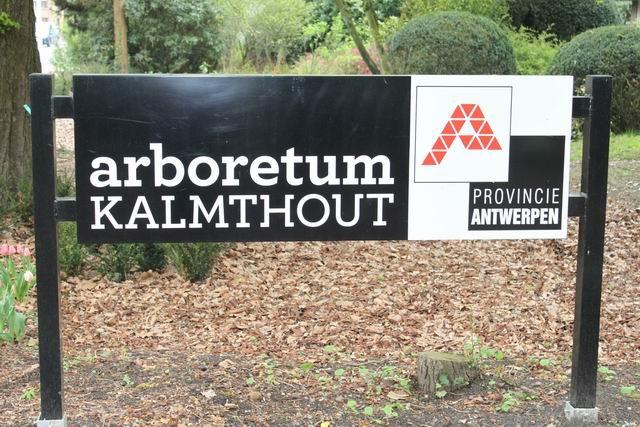 02-arboretum-kalmthout